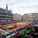世界一美しい広場グランプラスで開催される歴代のフラワーカーペットの歴史を辿る【ベルギー・ブリュッセル】
