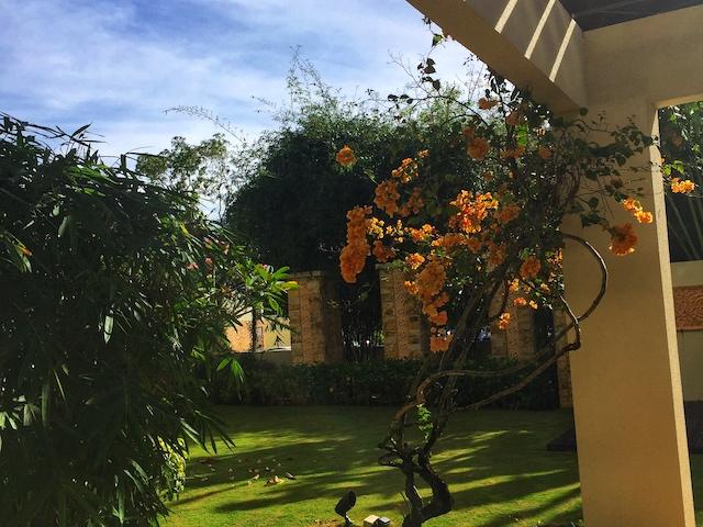 コタキナバル シャングリラ