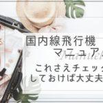 【女子必見】国内線飛行機マニュアル!これさえチェックしておけば大丈夫!